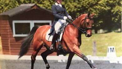 The Dressage Company Clinic with Elizabeth Mills