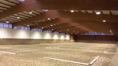 Dressage Competition Arena Hire
