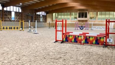 Show Jump Course Hire
